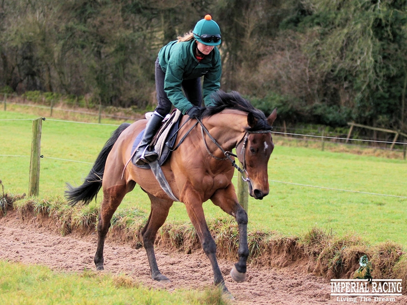 Deputy Commander on gallops